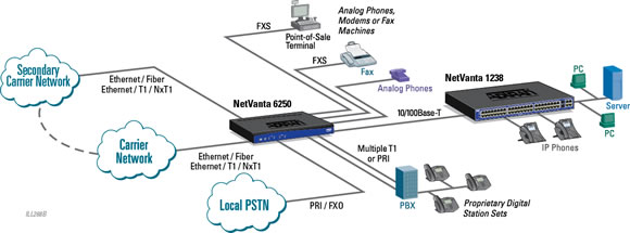 Internet Access and IP Trunking